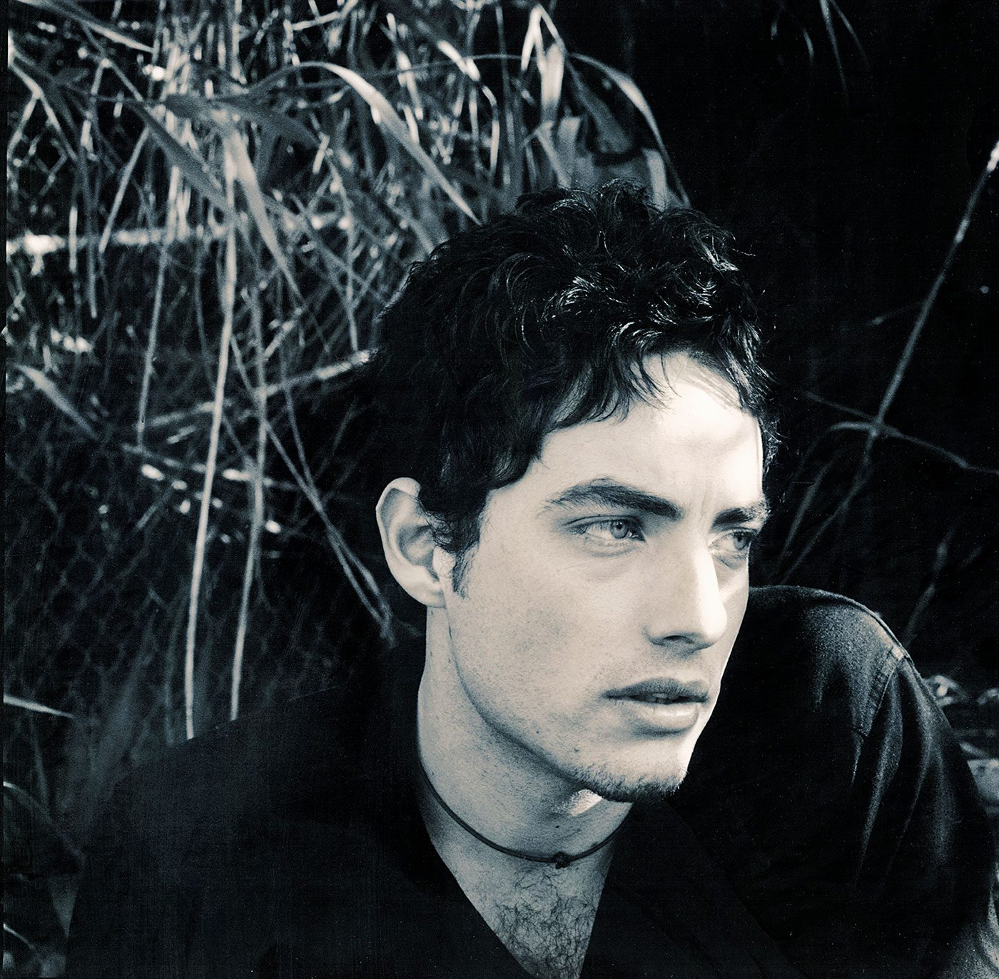 Jacob Dylan / Wallflowers